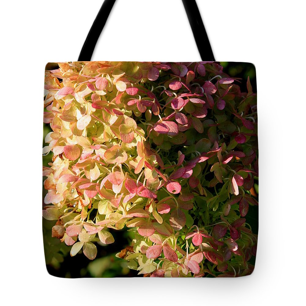 Hydrangea Tote Bag featuring the photograph October Hydrangea by Hanne Lore Koehler