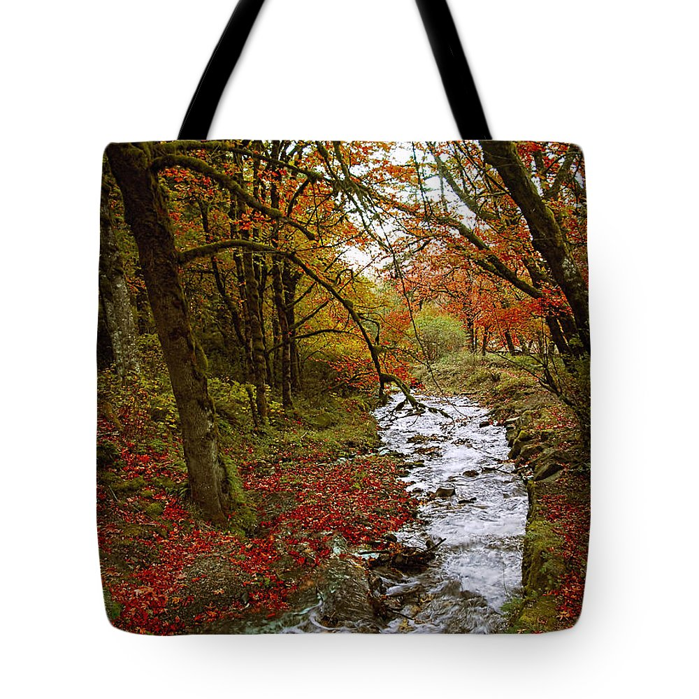 Oregon Tote Bag featuring the photograph October In Oregon by Shelly Wilkerson