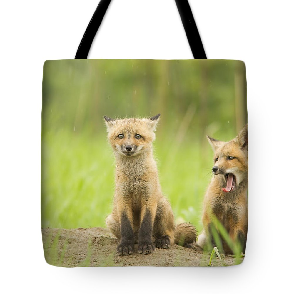 Pup Tote Bag featuring the photograph Oh No - Not More Rain by Mircea Costina Photography