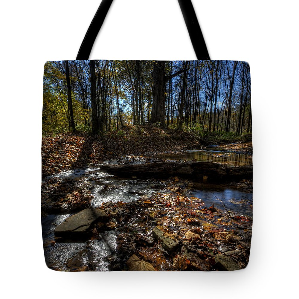 Fall Tote Bag featuring the photograph Ohio Fall Beauty Scene by David Dufresne