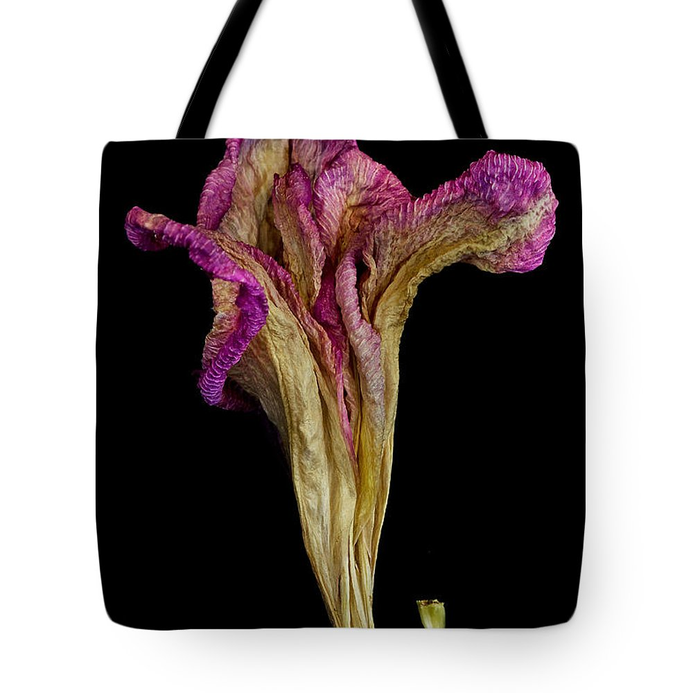Flower Tote Bag featuring the photograph Old Age With Beauty by Robert Woodward