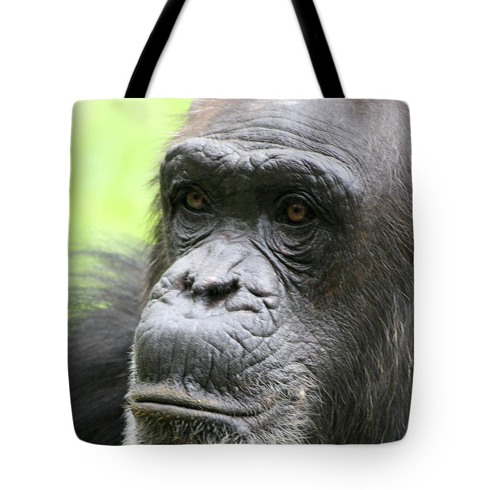 Busch Gardens Tote Bag featuring the photograph Old Gentleman by David Nicholls