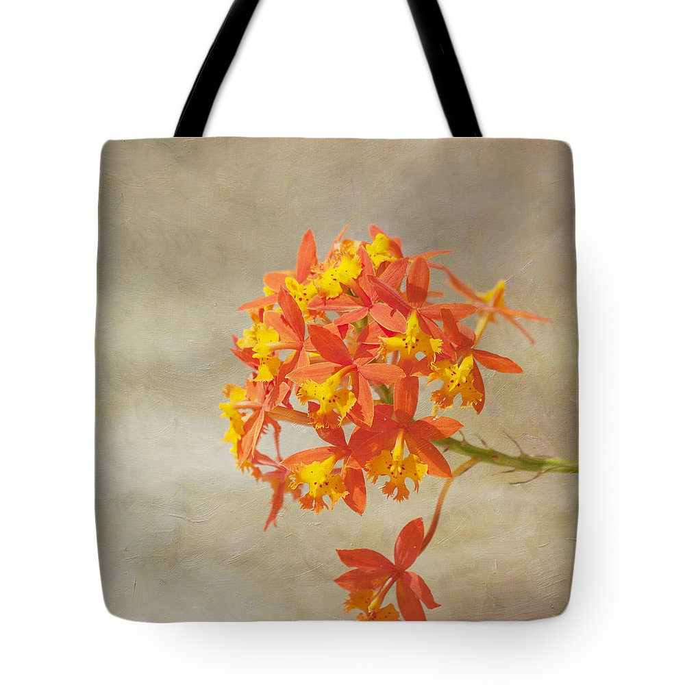 Orange Flower Tote Bag featuring the photograph On Fire by Kim Hojnacki