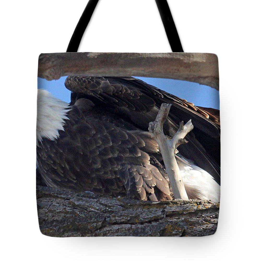 Colorado Tote Bag featuring the photograph On Guard by Bob Hislop