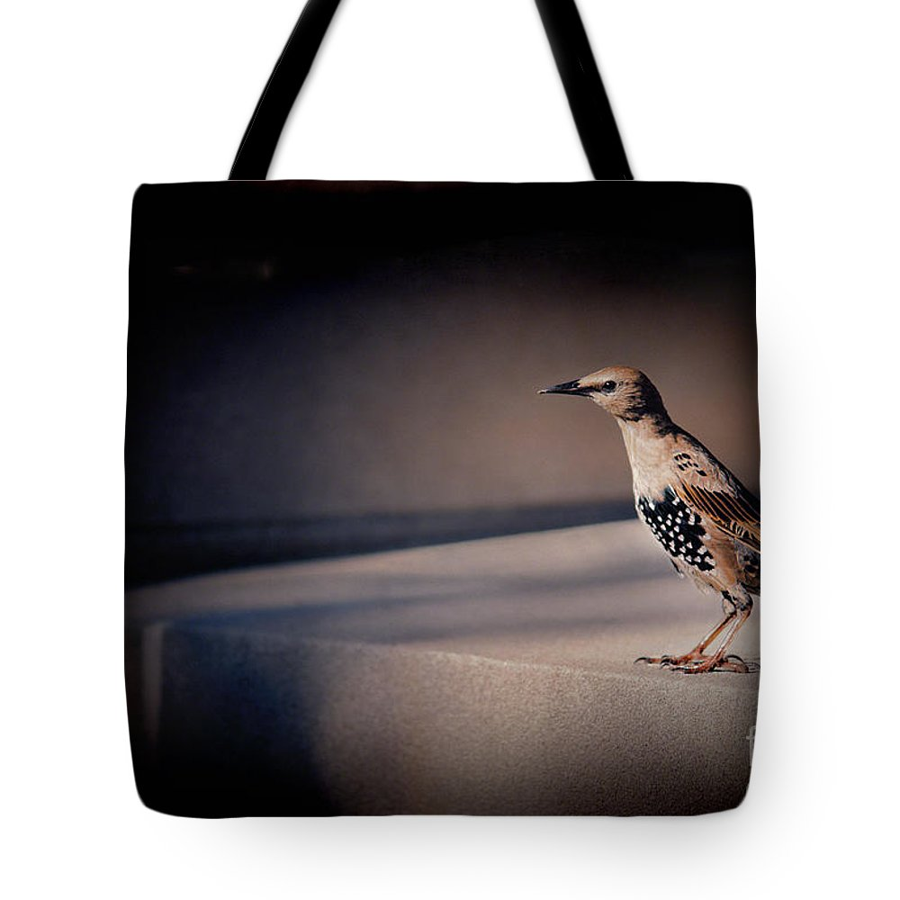 Bird Tote Bag featuring the photograph On Guard by Kristi Swift