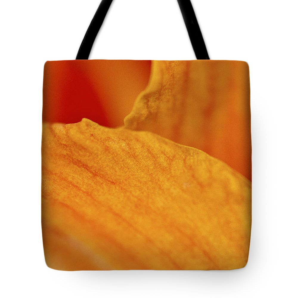 Daylily Tote Bag featuring the photograph On The Edge by Sharon M Connolly