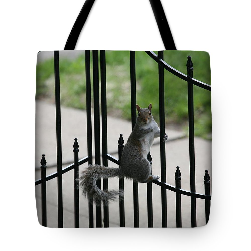 Squirrel Tote Bag featuring the photograph On The Fence by Eric Swan