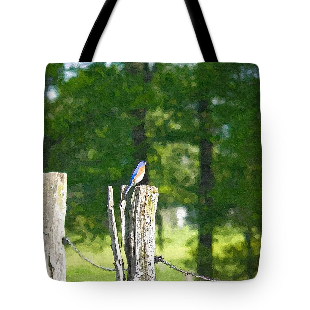 Bluebird Tote Bag featuring the photograph On The Hunt 2 by Nick Kirby