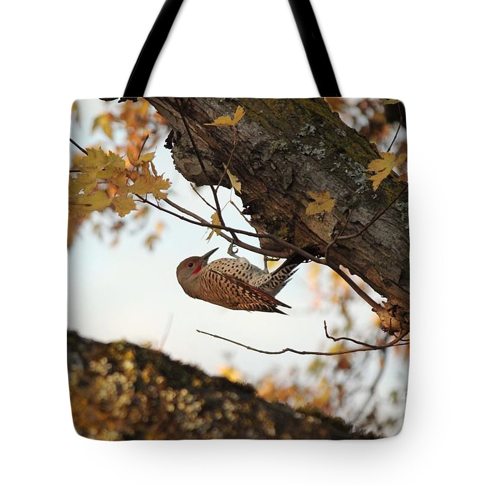 Bird Tote Bag featuring the photograph On The Hunt by Sharon Johnston