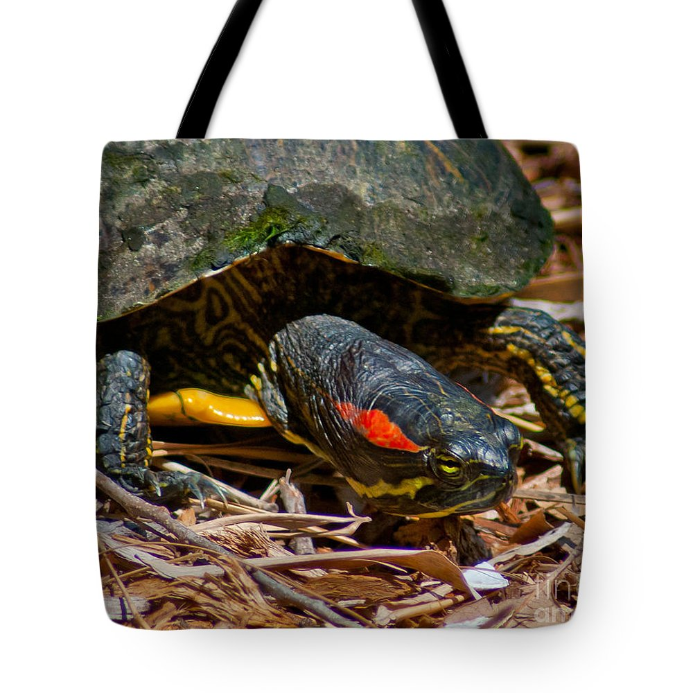Turtle Tote Bag featuring the photograph On The Move by Stephen Whalen