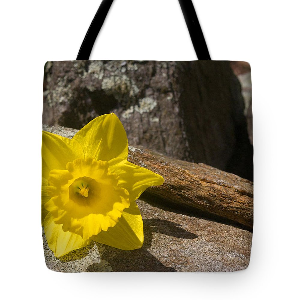Rock Tote Bag featuring the photograph On The Rocks by Ray Konopaske