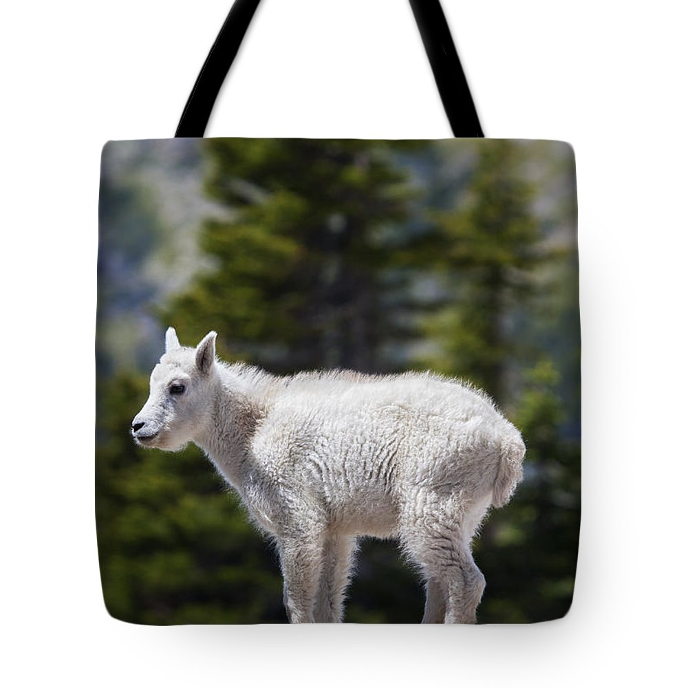 Goat Rocks Wilderness Photographs Tote Bags
