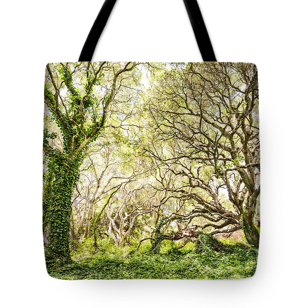 Evergreen Tote Bags