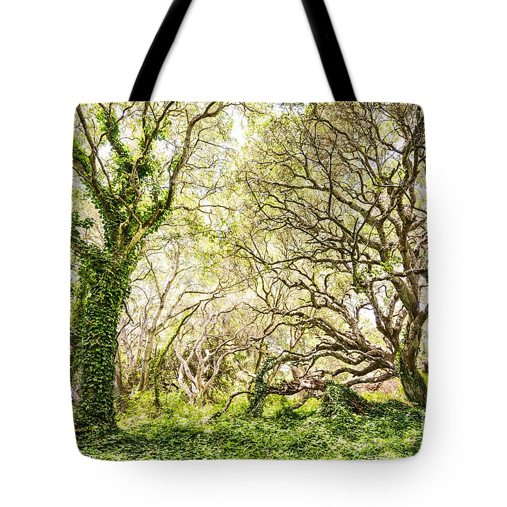 Evergreens Tote Bags