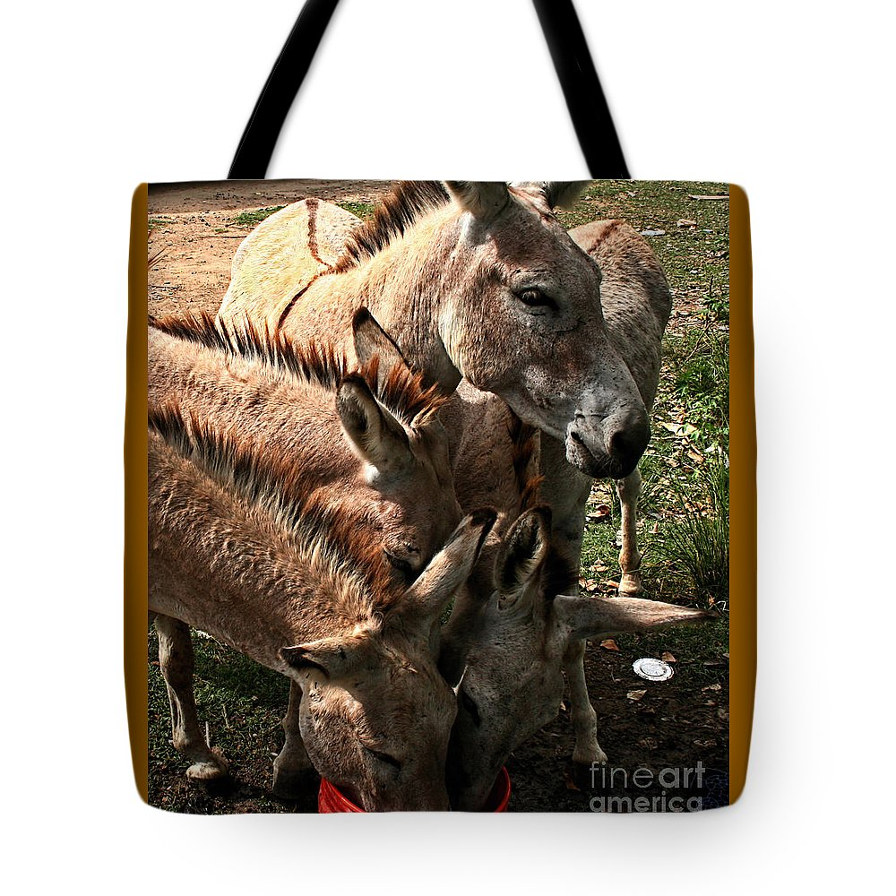 Animals Tote Bag featuring the photograph One Bucket by Rick Gripp