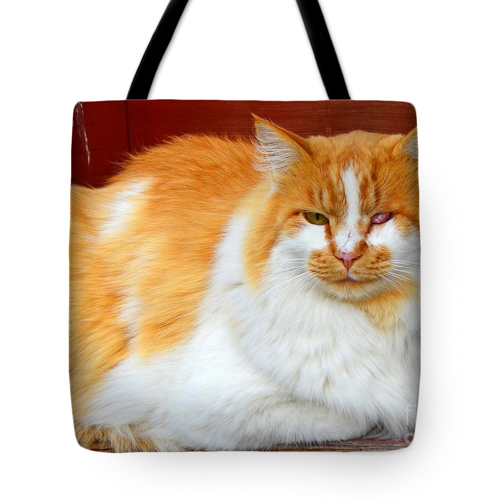 Abstract Tote Bag featuring the photograph One Eyed Jack by Lauren Leigh Hunter Fine Art Photography