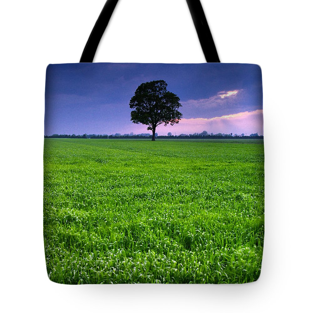 Landscape Tote Bag featuring the photograph One Tree by Cale Best