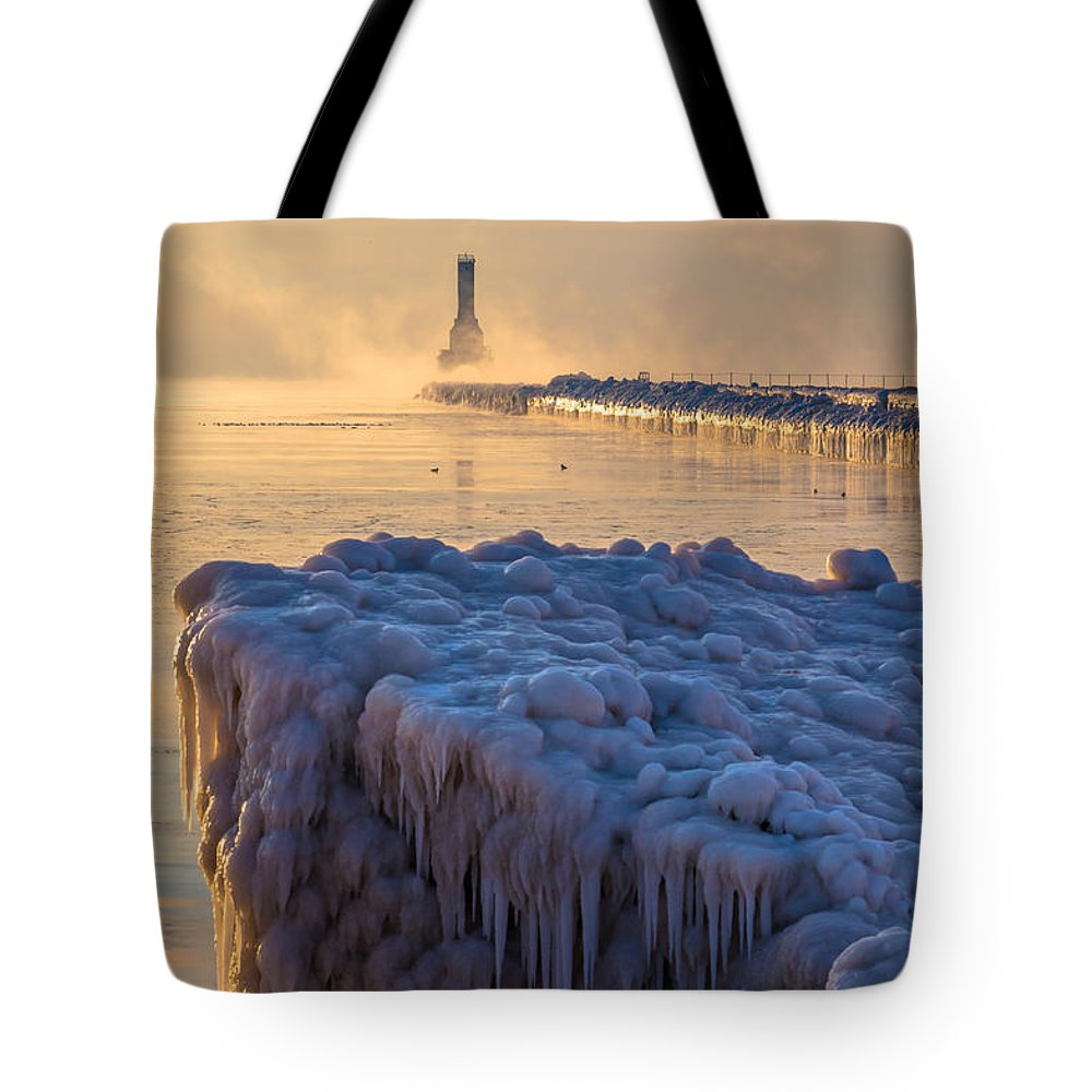 Ice Tote Bag featuring the photograph Only In Port by James Meyer
