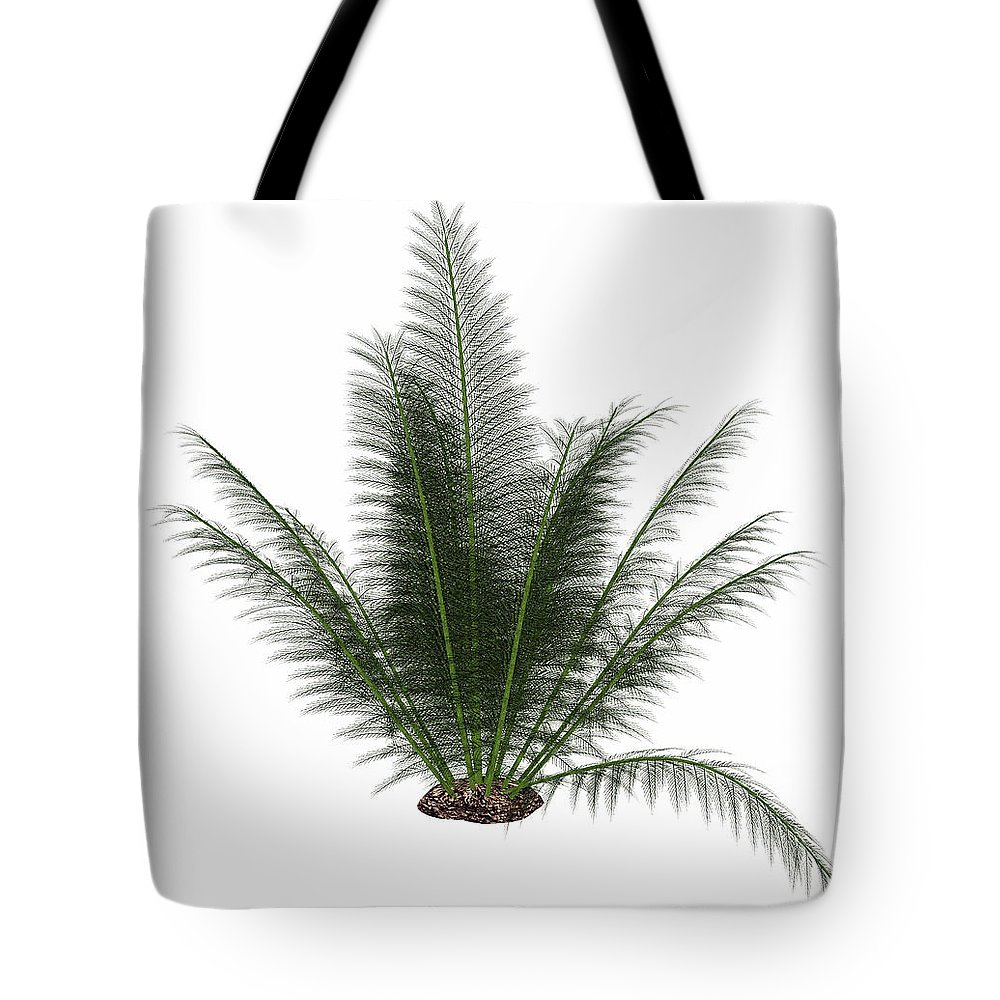 Prehistoric Era Tote Bag featuring the photograph Onychiopsis Prehistoric Fern by Elena Duvernay