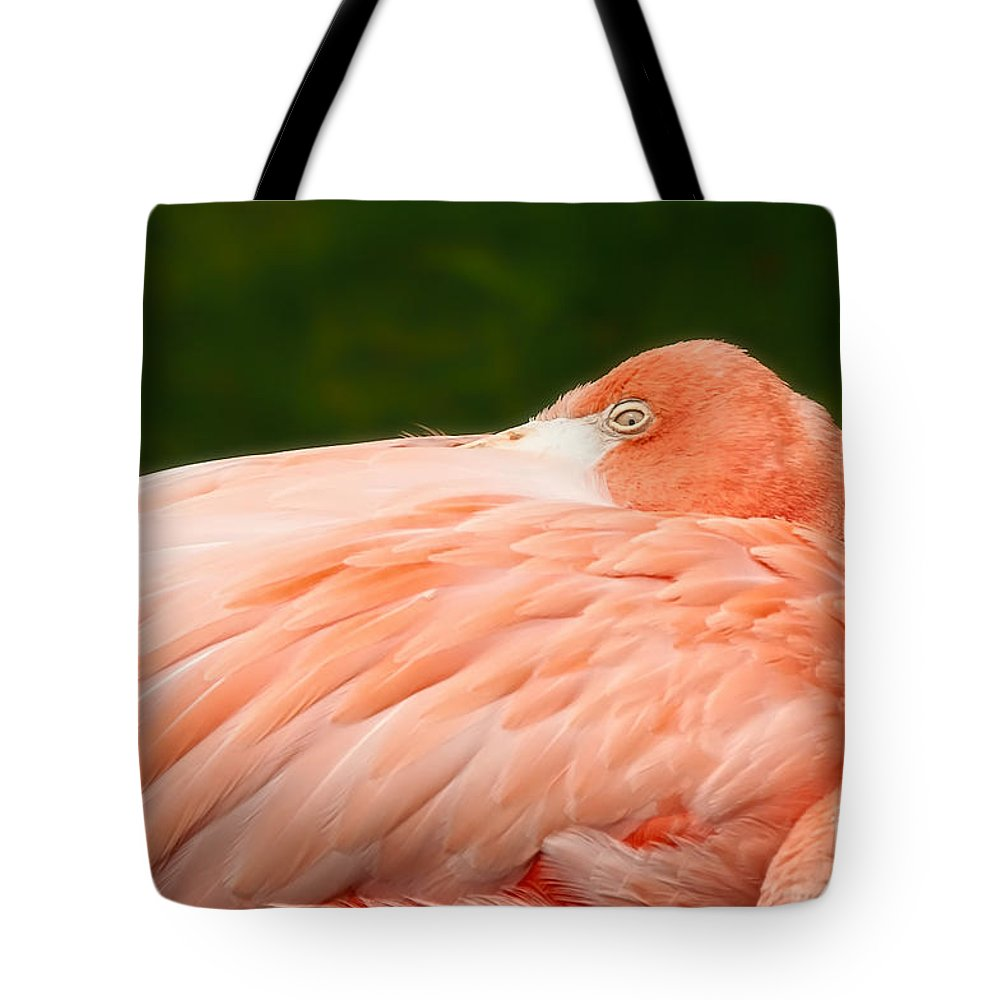 Flamingo Tote Bag featuring the photograph Flamingo With An Open Eye by David Perry Lawrence