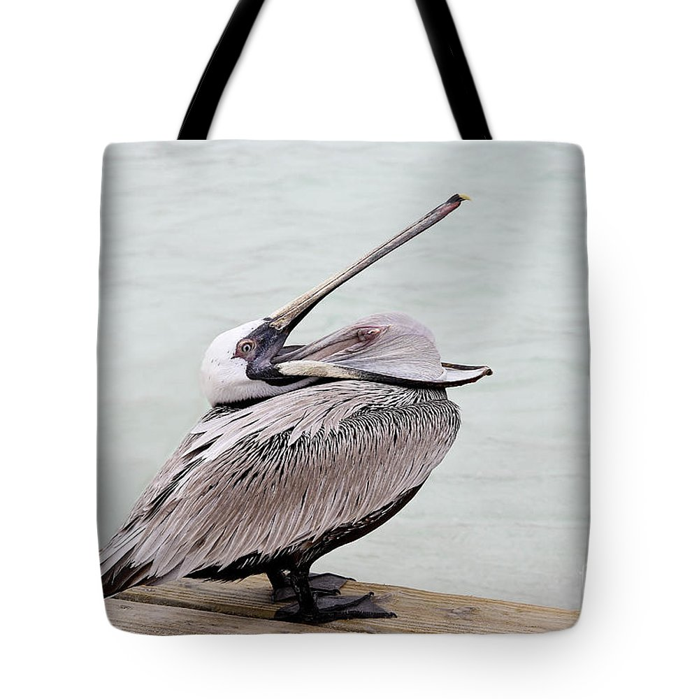Bird Tote Bag featuring the photograph Open Wide by Teresa Zieba