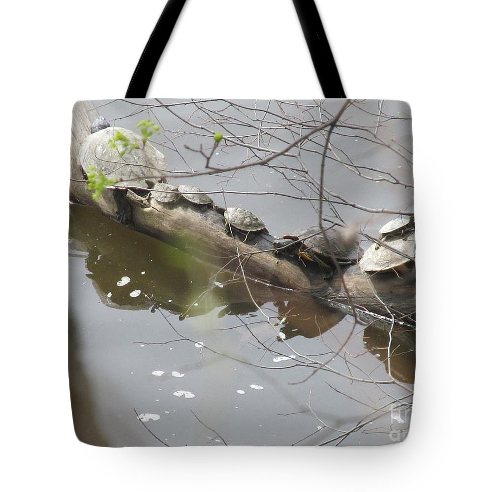 Turtle Tote Bag featuring the photograph Opposite Direction by Tina M Wenger