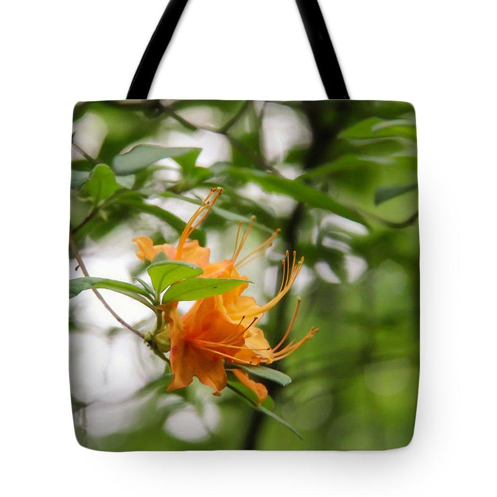 Orange Azalea Delight Tote Bag featuring the photograph Orange Azalea Delight by Rachel Cohen