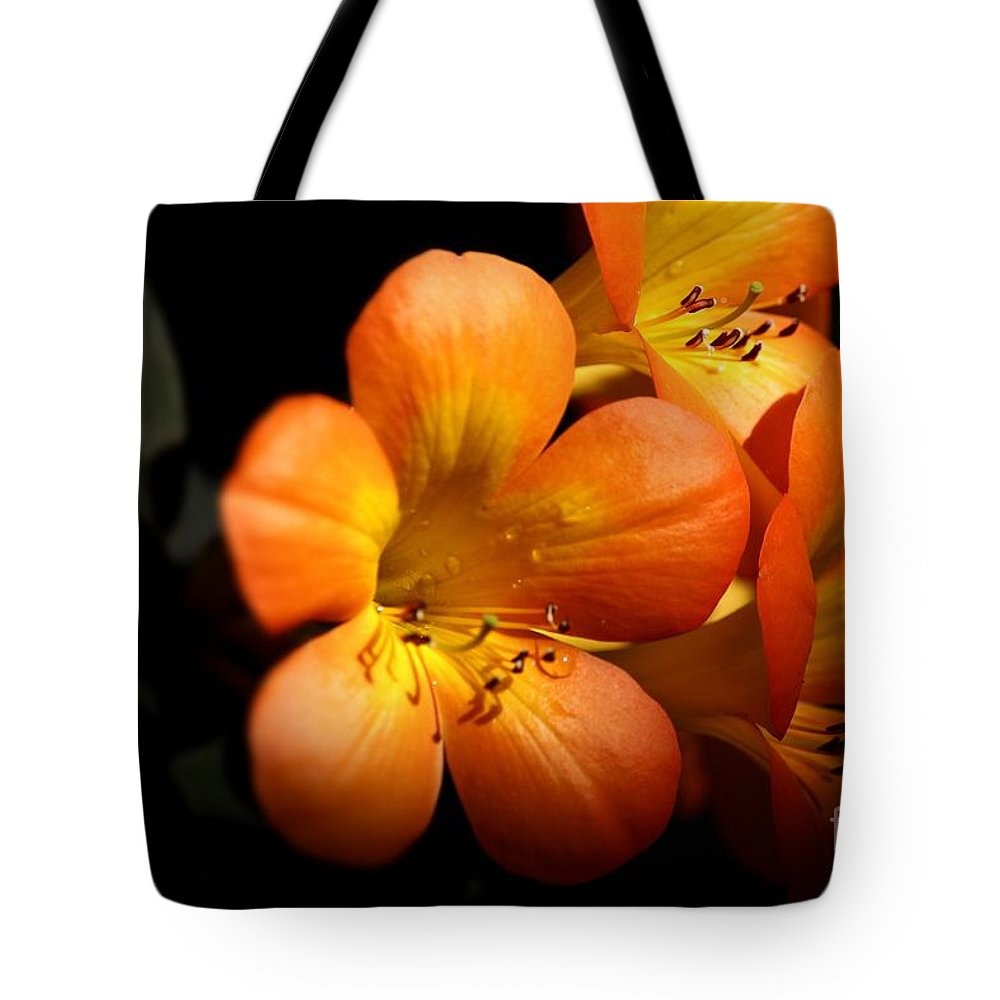 Tropical Tote Bag featuring the photograph Orange Blossoms by Karen Anderson