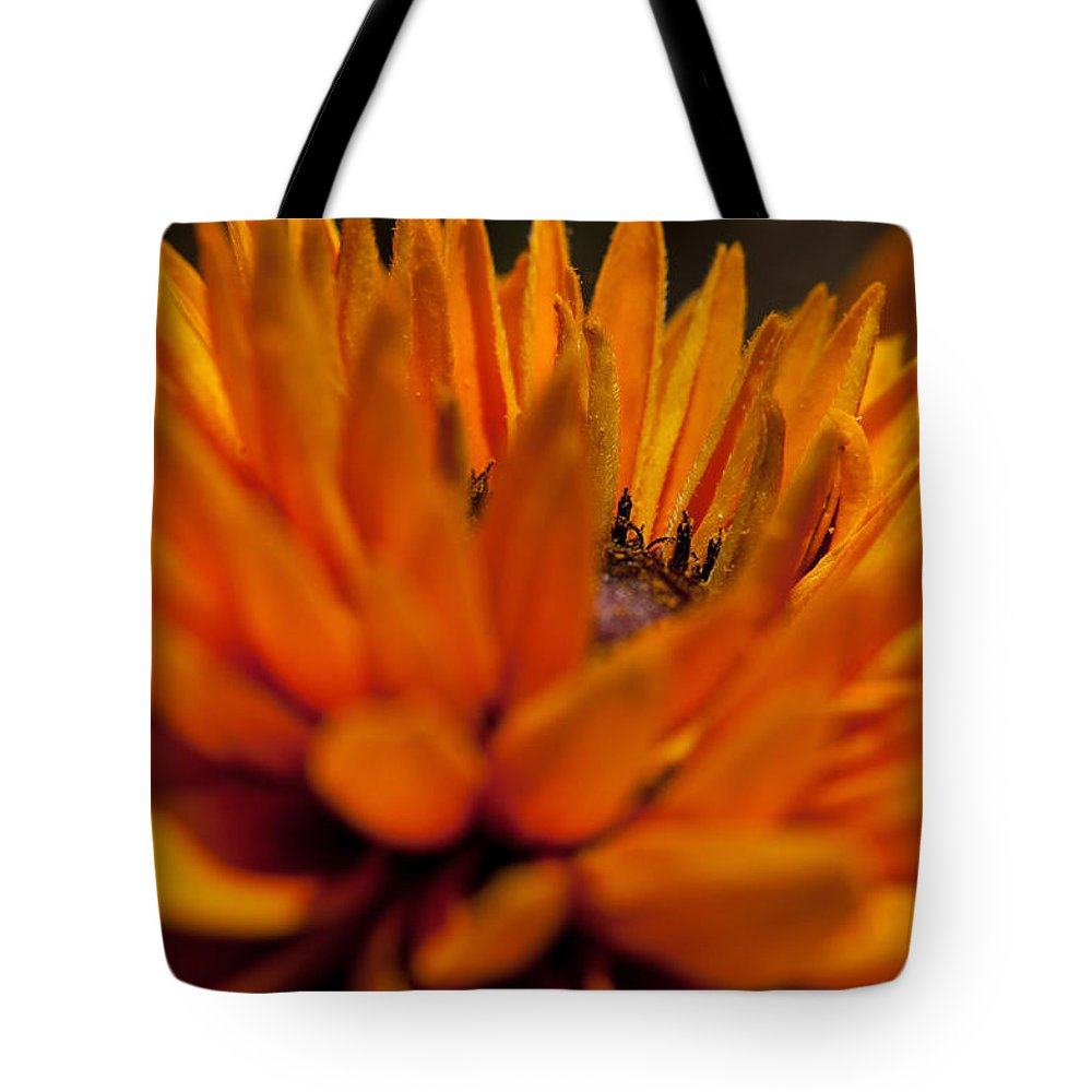 Summer Flowers Tote Bag featuring the photograph Orange Burst by Sabine Edrissi