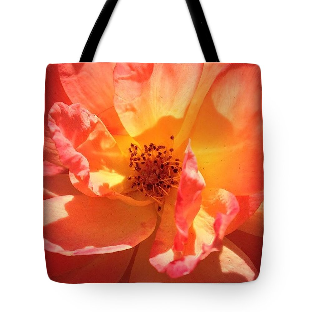 Orange Confection Rose Tote Bag featuring the photograph Orange Confection Rose by Anna Porter