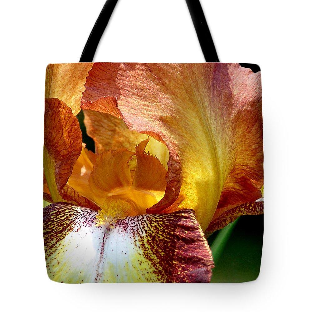 Iris Tote Bag featuring the photograph Orange Iris by David Hohmann