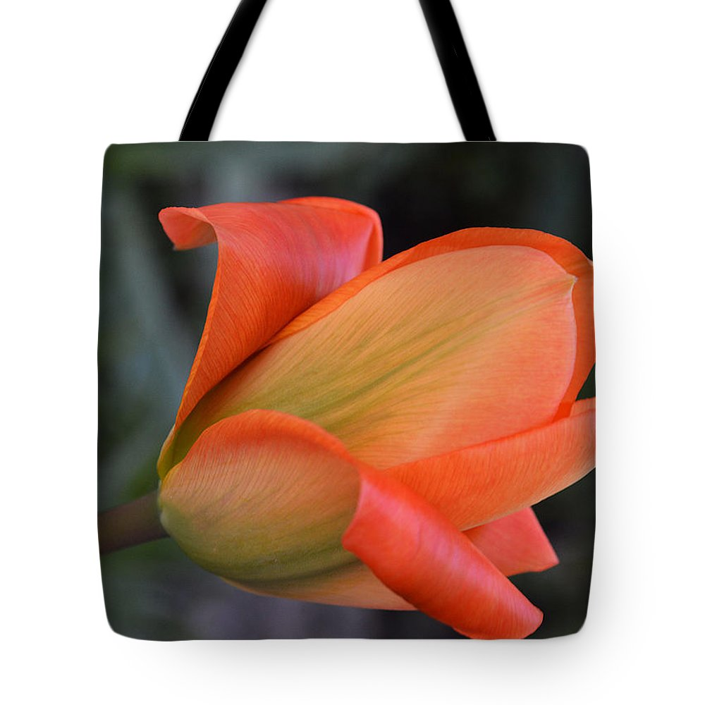 Tulip Tote Bag featuring the photograph Orange Lady by Felicia Tica