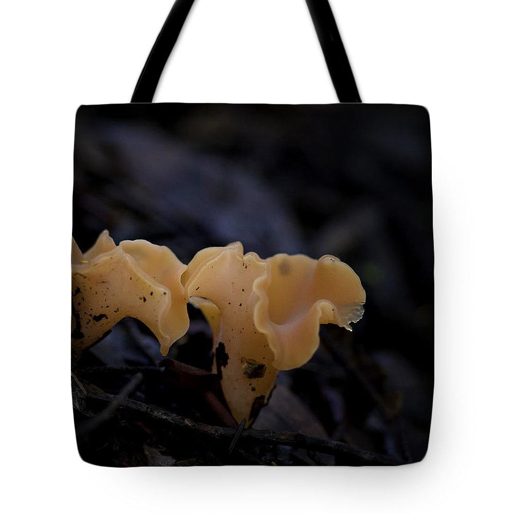 Mushroom Tote Bag featuring the photograph Orange Peel by Betty Depee