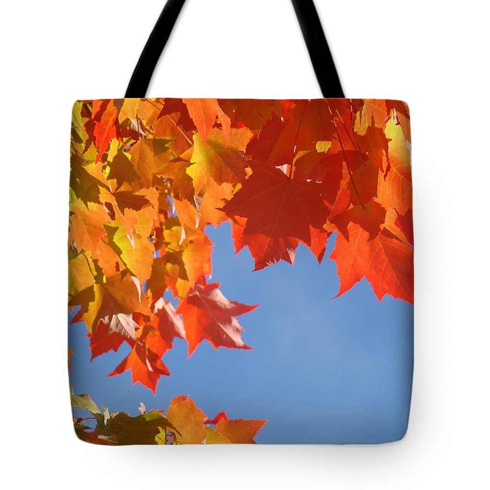Red Tote Bag featuring the photograph Orange Red Yellow Autumn Fall Tree Leaves Art by Baslee Troutman