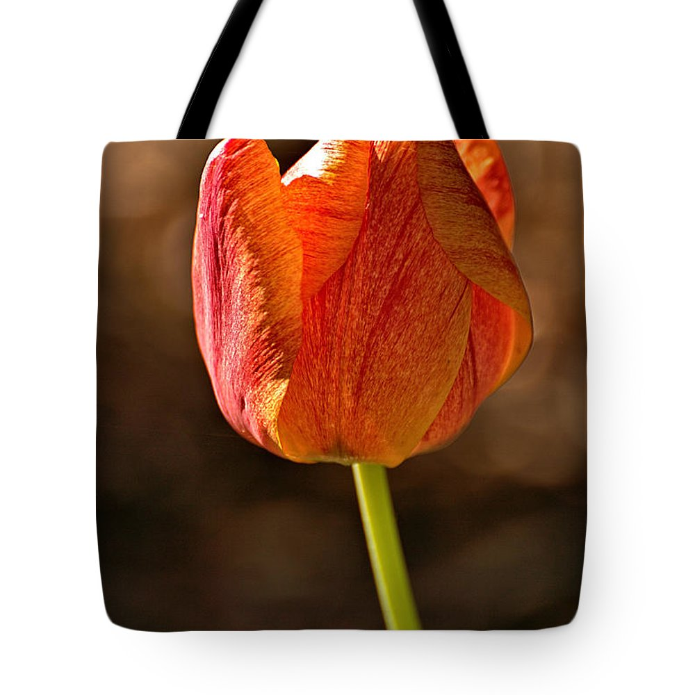 Tulip Tote Bag featuring the photograph Orange/yellow Tulip by Mel Hensley