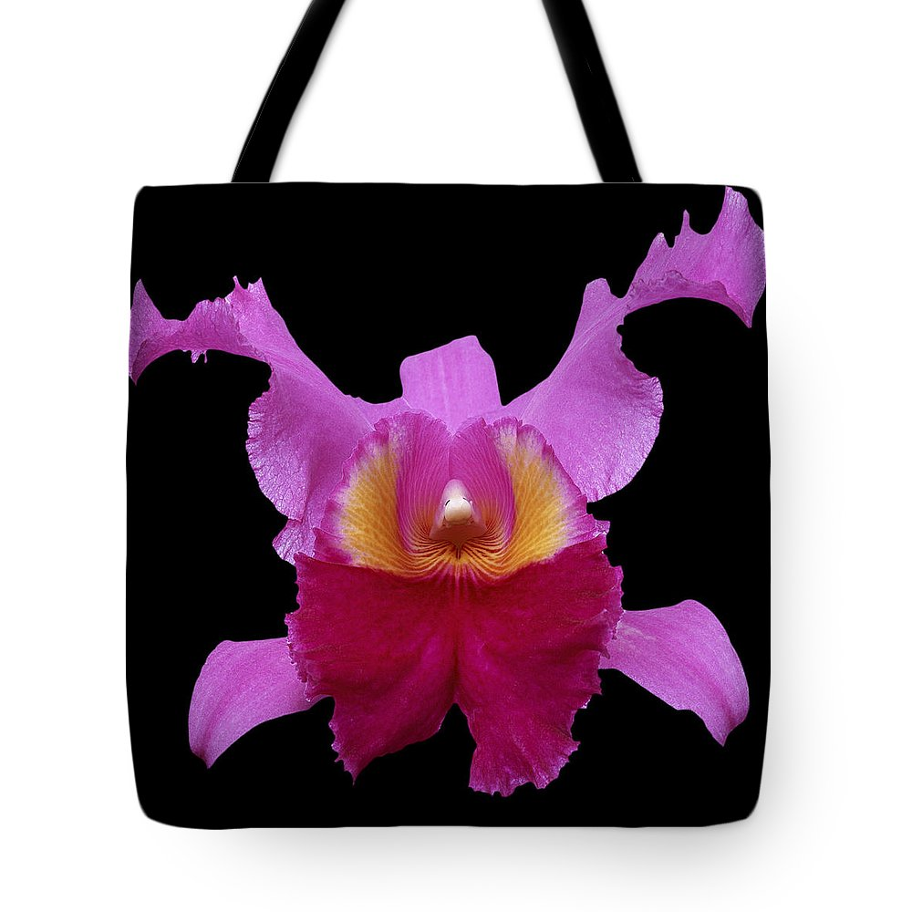 Flower Photographs Tote Bag featuring the photograph Orchid 002 by Ingrid Smith-Johnsen