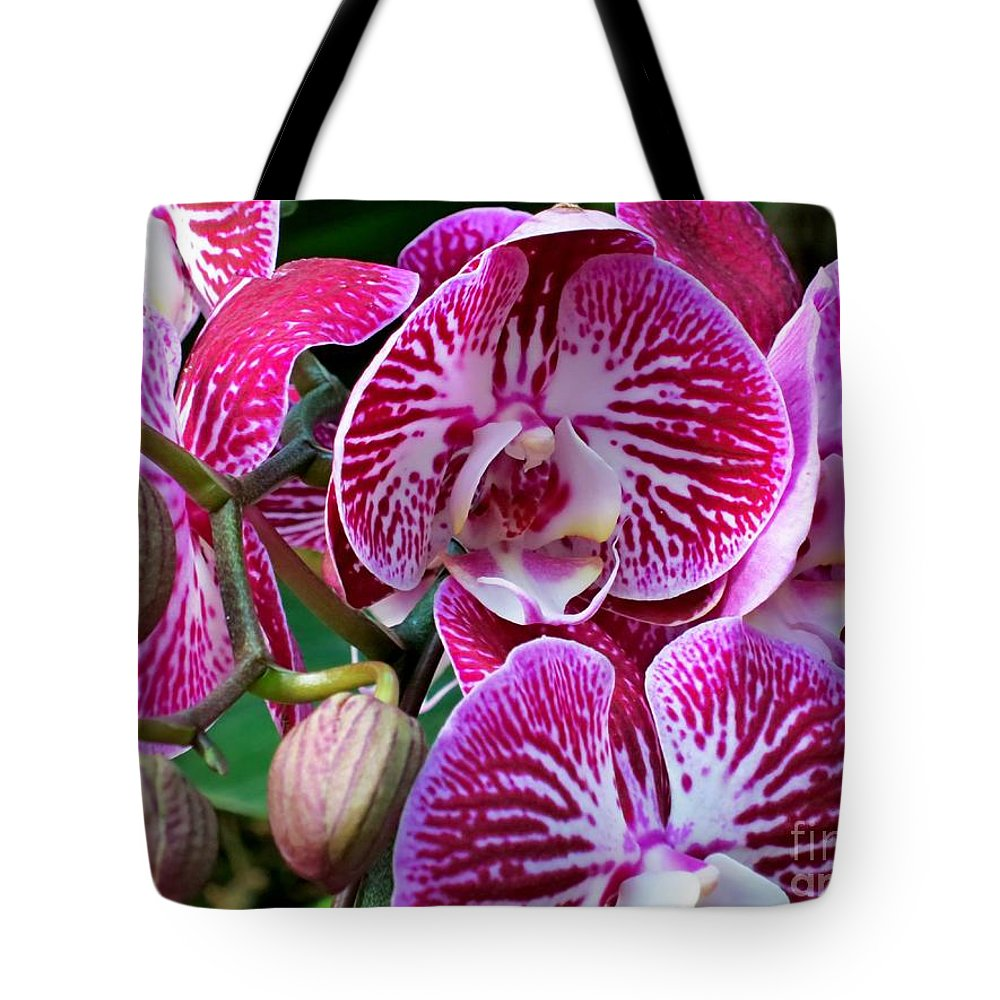 Orchid Tote Bag featuring the photograph Radiant Orchid by Lena Photo Art