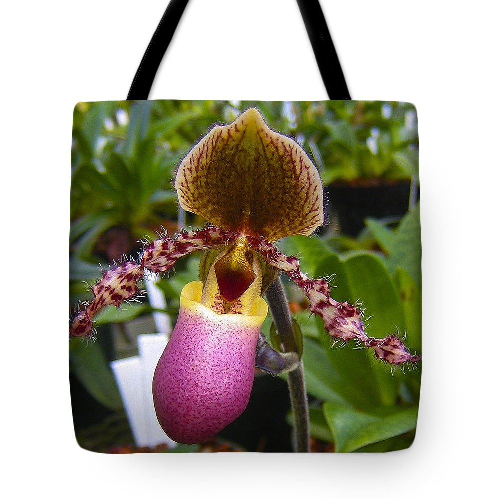 Orchid Tote Bag featuring the photograph Orchid 31 by Ingrid Smith-Johnsen