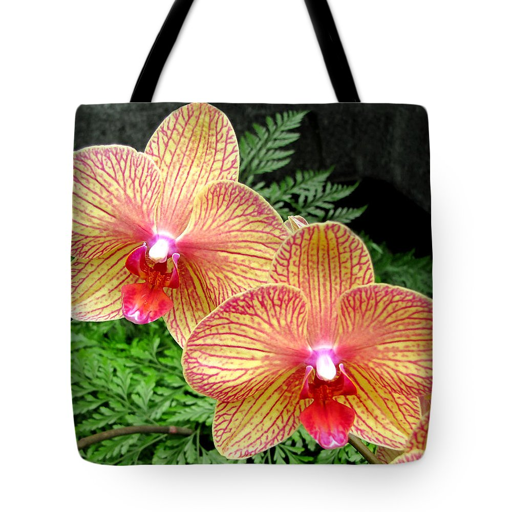 Duane Mccullough Tote Bag featuring the photograph Orchid Pair by Duane McCullough