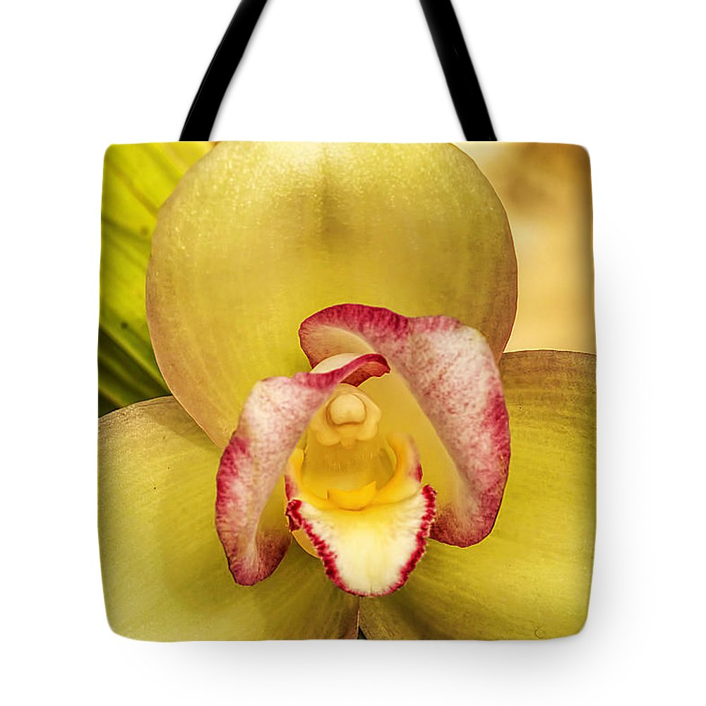 Recent Tote Bag featuring the photograph Orchid Series 1 by Geraldine Scull