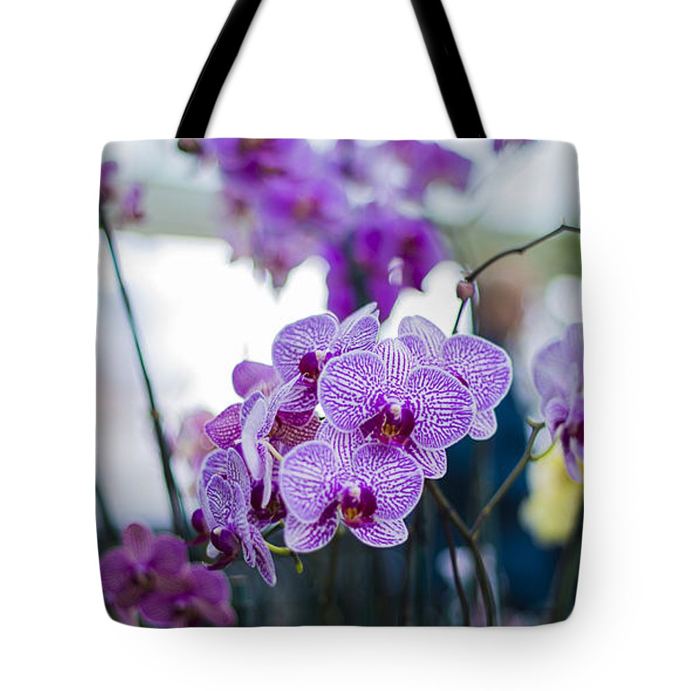 Botanical Gardens Tote Bag featuring the photograph Orchid by Theodore Jones