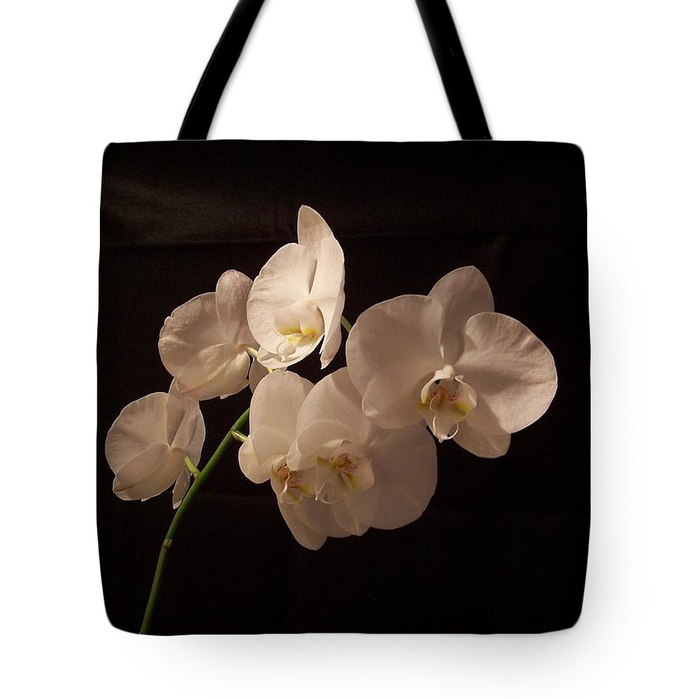 Phalaenopsis Tote Bag featuring the photograph Orchid White by Holly Eads