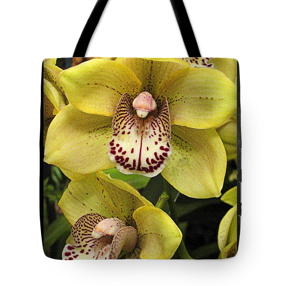 Orchids Tote Bag featuring the photograph Orchids 9 by Zbigniew Krol