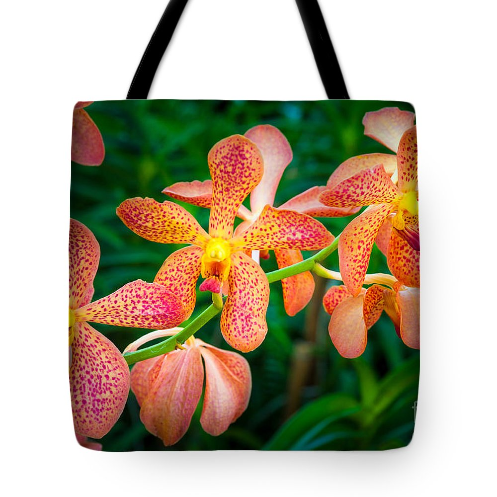 Asia Tote Bag featuring the photograph Orchids by Inge Johnsson