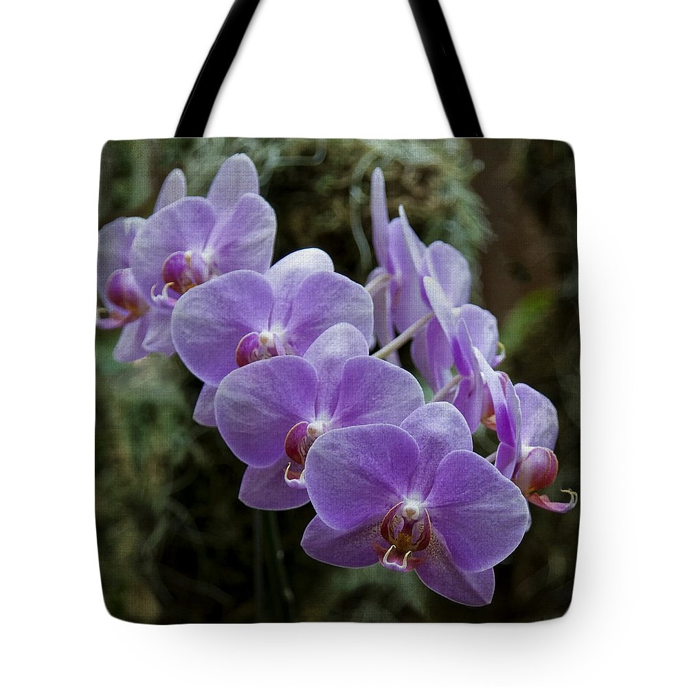 Orchids Tote Bag featuring the photograph Orchids Square Format Img 5437 by Greg Kluempers