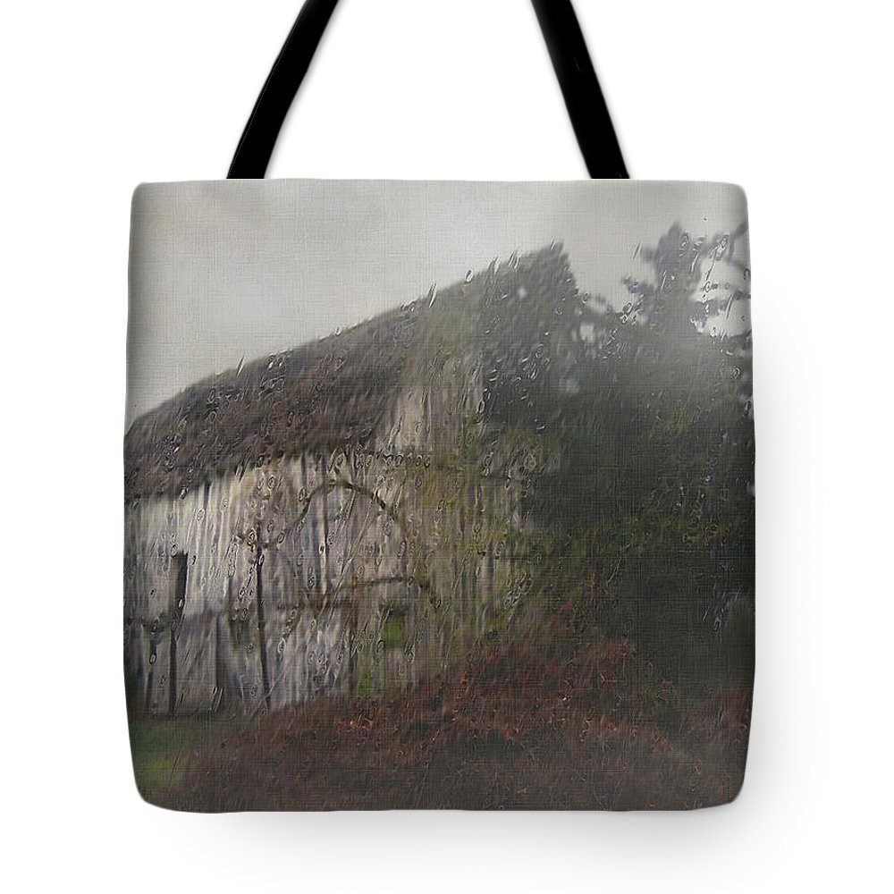 Barn Tote Bag featuring the painting Oregon Relic by RC DeWinter