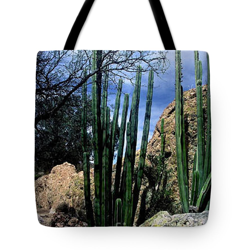 Cactus Tote Bag featuring the photograph Organ Pipe by Kathy McClure