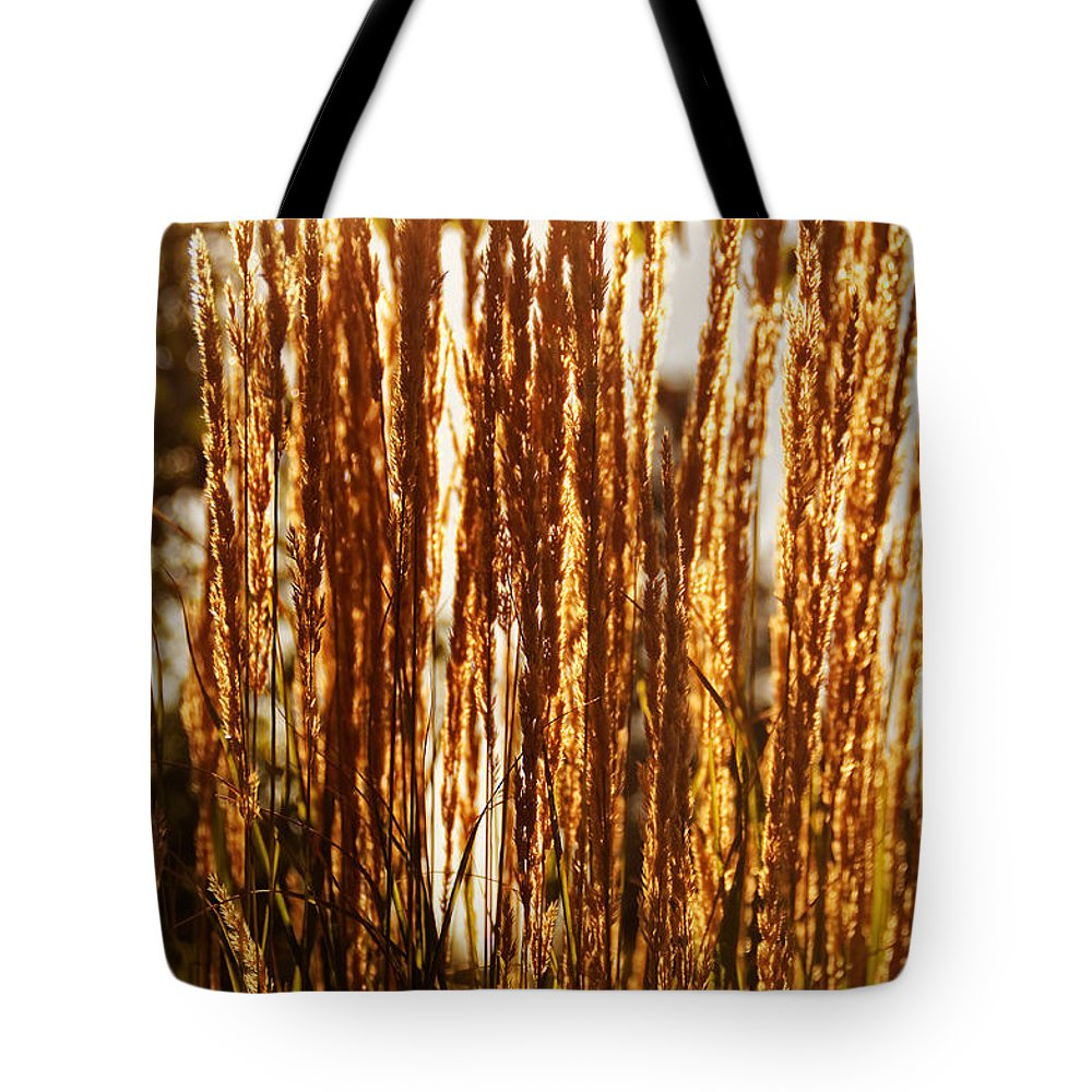 Ornamental Tote Bag featuring the photograph Ornamental Golden Grass by Mick Anderson