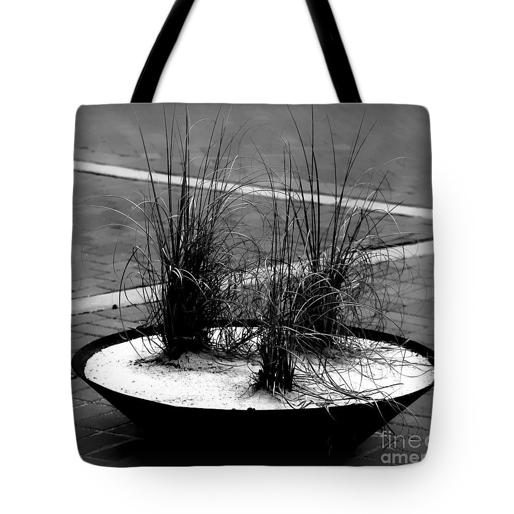 Grass Tote Bag featuring the photograph Ornamental Grass Display by Debra Forand