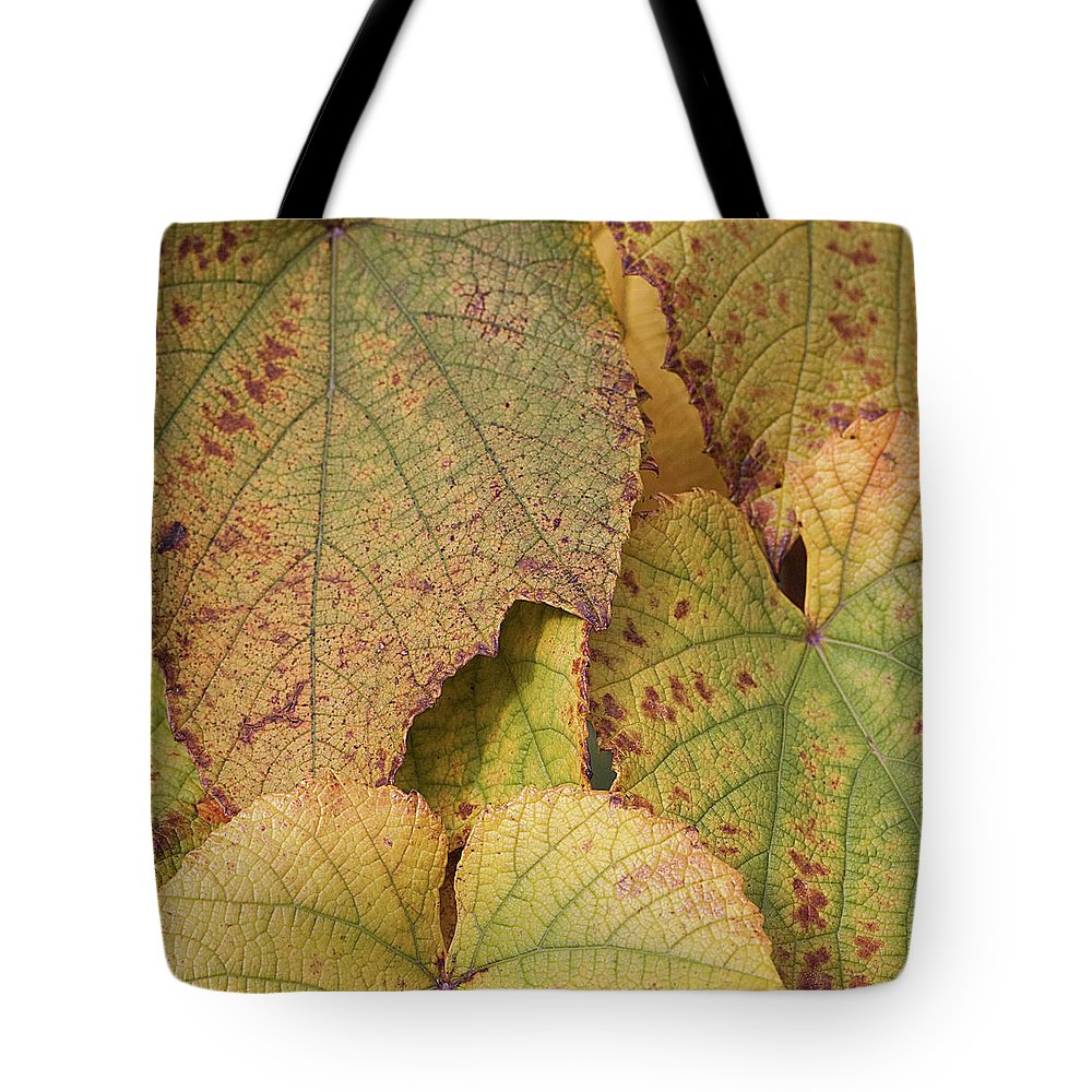 Coin Tote Bag featuring the photograph Ornamental Vine by Kim Haddon Photography